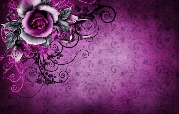 Picture background, rose, texture, wallpaper, rose, vintage, texture, vintage, grunge, purple, paper, floral