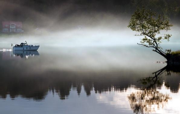 Picture landscape, fog, lake, tree, boat, morning