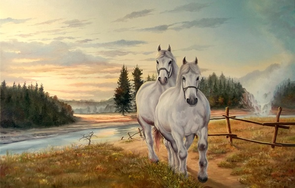 Picture the sky, grass, clouds, nature, river, horse, mane, white, painting