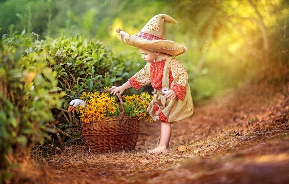Picture flowers, childhood, basket, tale, hat, boy, costume, goose