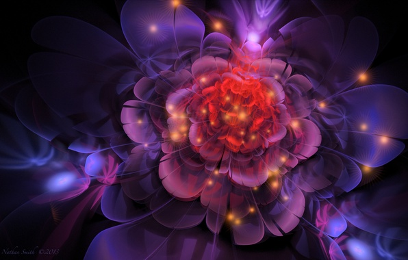 Picture flower, line, abstraction, lights