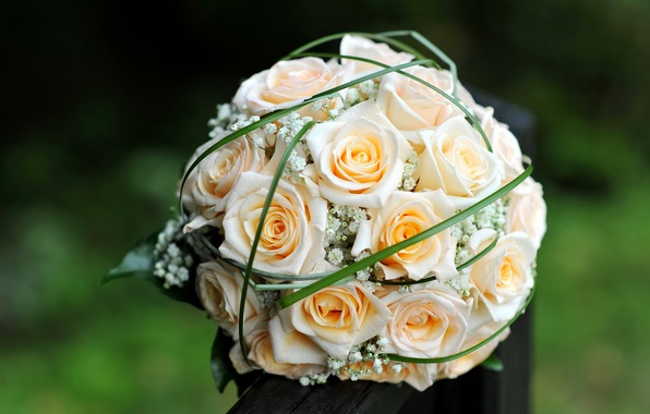 Picture flowers, roses, bouquet, yellow, buds, wedding