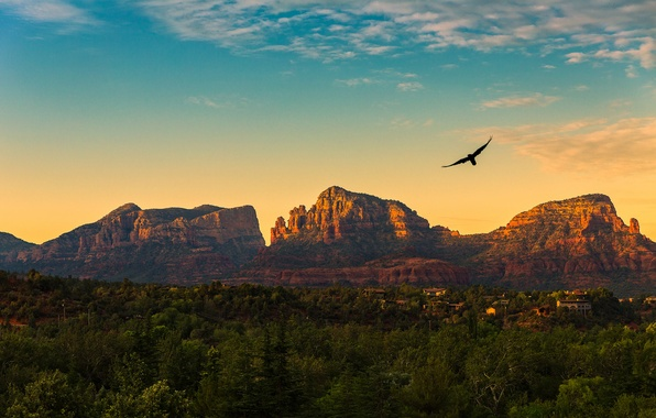 Picture the sky, clouds, flight, sunset, mountains, birds, village, AZ, United States, Red Rock