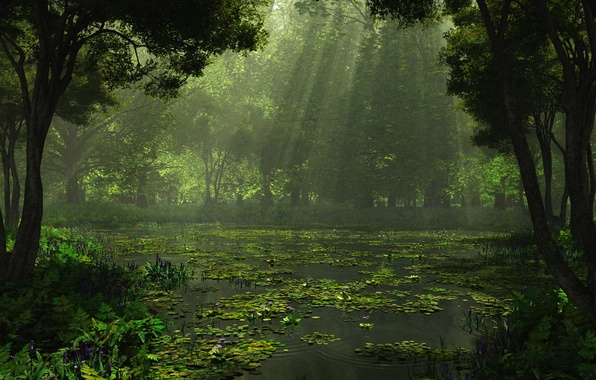 Picture forest, trees, nature, lake, rendering