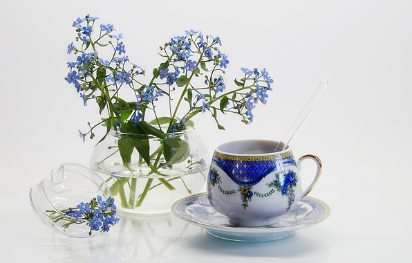 Picture flowers, background, Cup