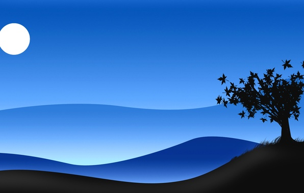 Picture the sky, night, tree, the moon, Bush, silhouette