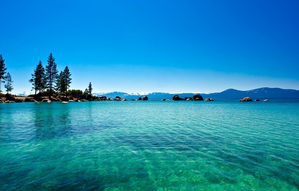 Picture forest, water, lake, California, blue, lake Tahoe