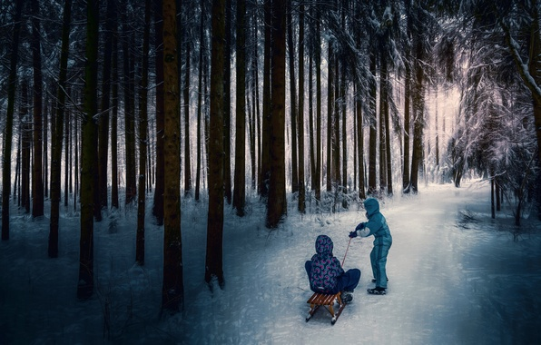 Picture children, treatment, sled, winter forest