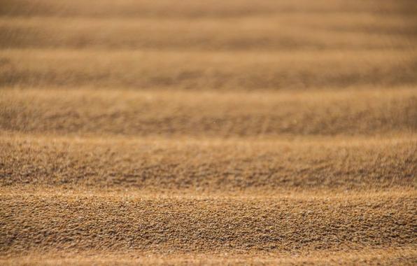 Picture sand, desert, texture