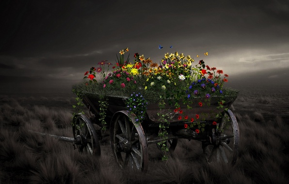 Picture flowers, style, background, cart