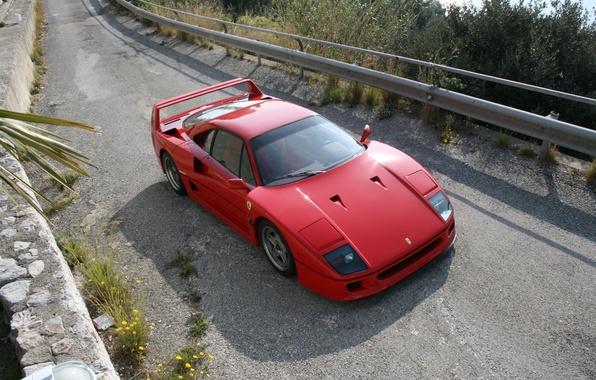 Picture Red, Road, Ferrari, Asphalt, Ferrari, F40, The front, The rise