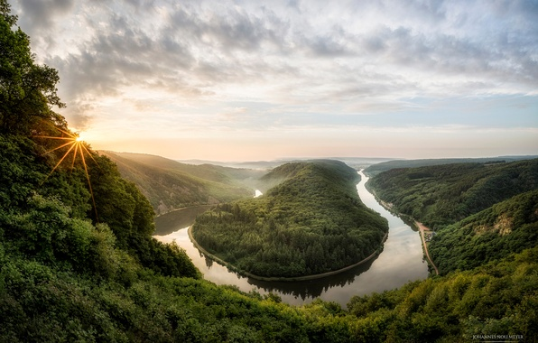 Picture the sun, rays, trees, fog, river, spring, morning, Germany, canyon, May, Saar loop, Saar