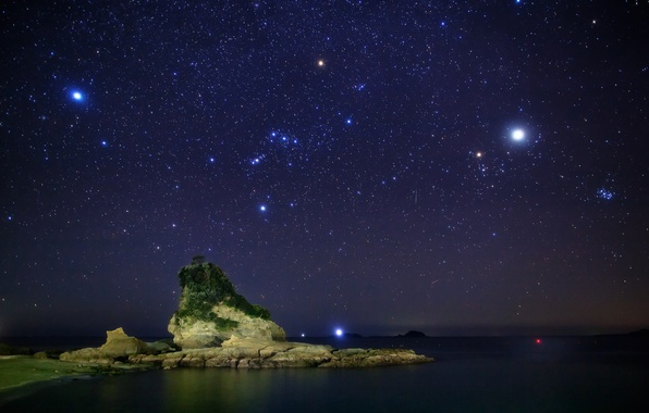 Picture sea, the sky, stars, night, stones, tree, constellation