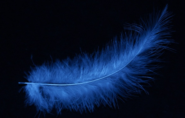 Picture pen, blue, black background