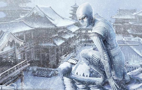 Picture winter, roof, girl, snow, Asia, art, ninja, steve argyle