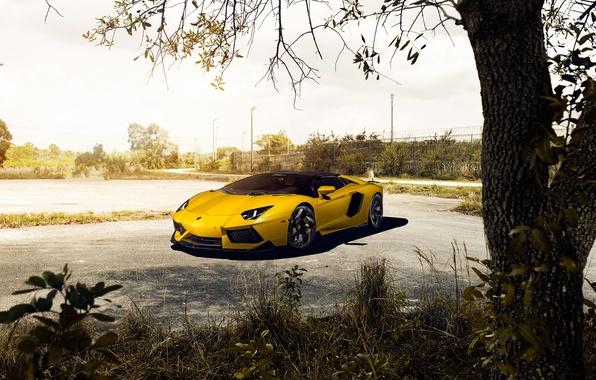Picture Roadster, Lamborghini, Front, Vorsteiner, Yellow, LP700-4, Aventador, Supercar