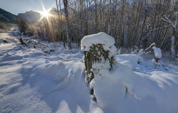 Picture winter, the sky, the sun, snow, trees, mountains, stump, day