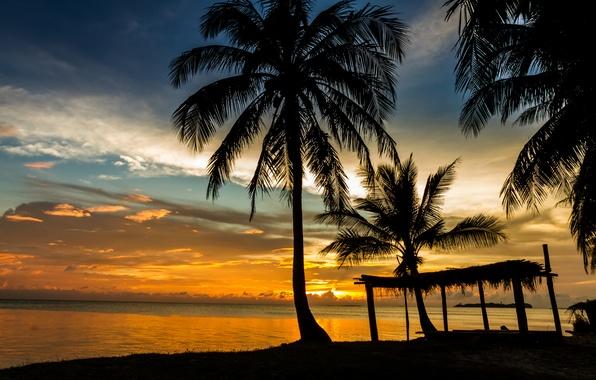 Picture sea, beach, sunset, Palma, shore, summer, beach, sea, sunset
