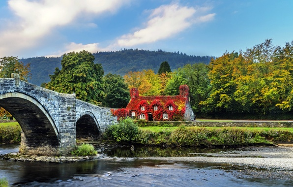 Picture forest, trees, bridge, design, river, UK, house, Wales, Llanrwst