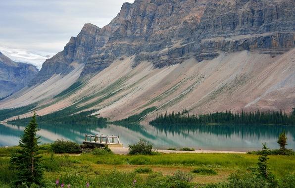 Picture trees, mountains, lake, pier, Canada, Albert, the bridge, Bow Lake