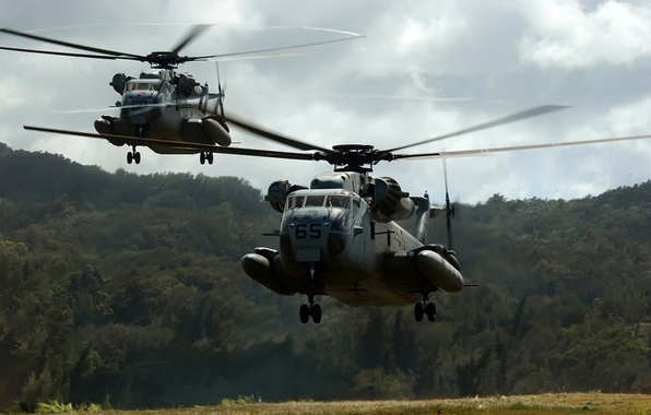 Picture NATO, landing, landing helicopters