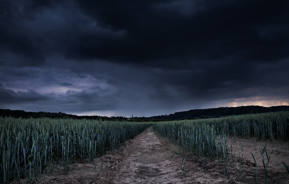 Picture field, storm, lull
