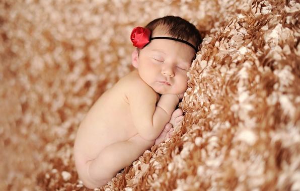 Picture children, sleep, baby, child, baby