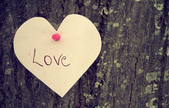 Picture love, tree, mood, the inscription, heart, love, heart.feeling