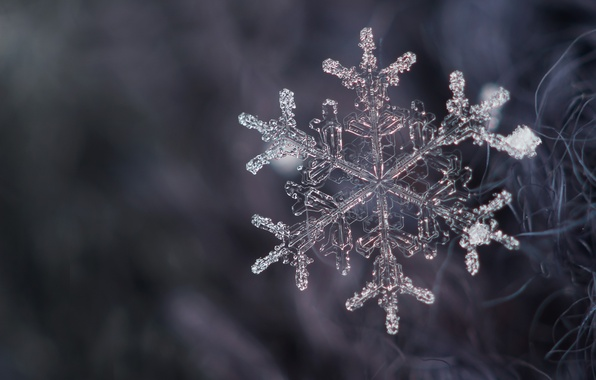Picture crystal, snow, snowflake