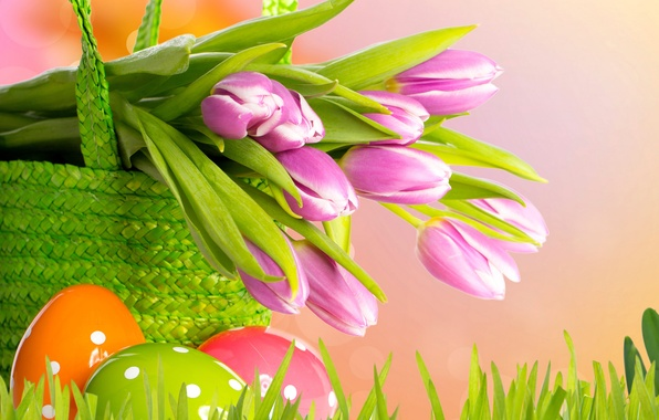 Picture flowers, eggs, spring, Easter, tulips
