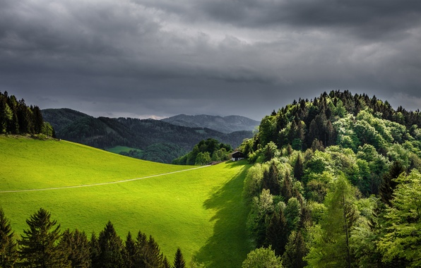 Picture forest, the sky, mountains, clouds, nature, field, spring, grey