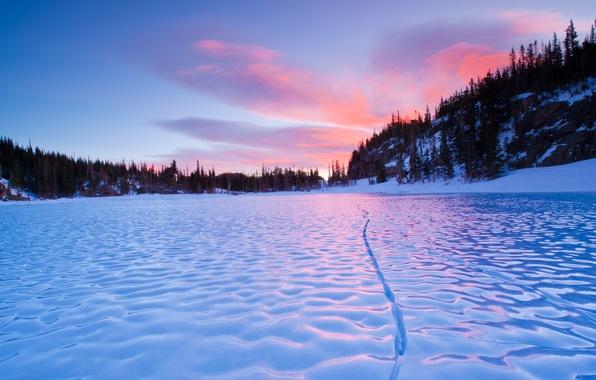 Picture winter, macro, snow, river, ice