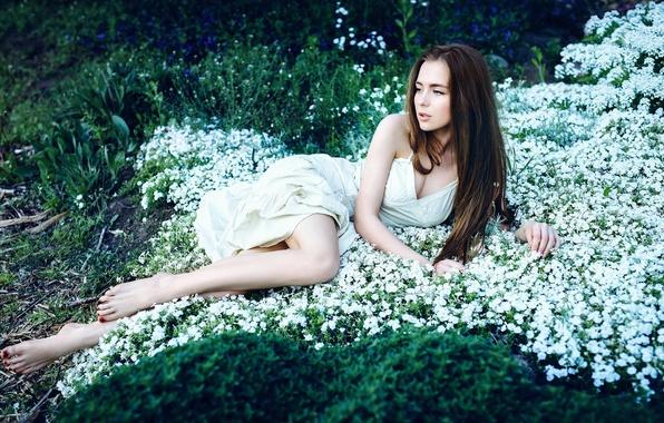 Picture grass, girl, sweetheart, dress, legs, beautiful, flowers, long-haired, Alexander Salihovic