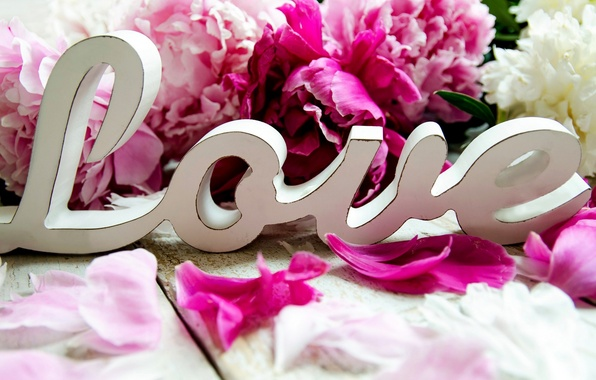 Picture love, flowers, holiday, peonies