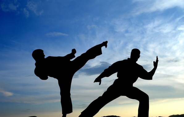 Picture The sky, Sport, Battle, Wallpaper, Shadows, Blow, Fighters, The fight, Silhouette, Martial arts, Karate