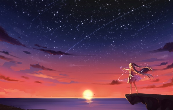 Picture the sky, girl, the sun, stars, clouds, sunset, seagulls, anime, art, vocaloid, hatsune miku, kyuri