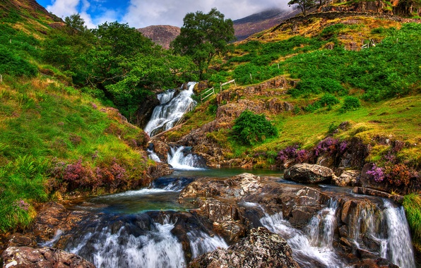 Picture the sky, grass, clouds, trees, landscape, flowers, mountains, river, stones, rocks, stream, Snowdonia