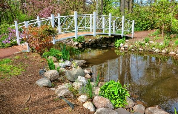 Picture photo, Nature, Bridge, Spring, Pond, Stones, Park