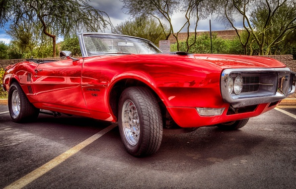 Picture HDR, Pontiac, muscle car, Pontiac, the front, Firebird, Herbed