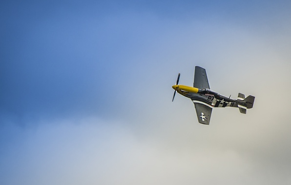 Photo wallpaper P51 Mustang, the plane, the sky, fighter