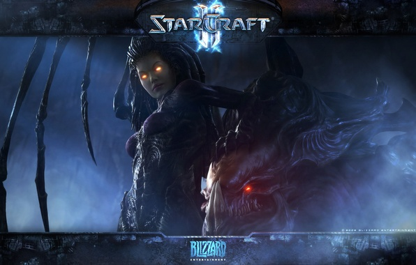 Picture starcraft, zerg, carrigan