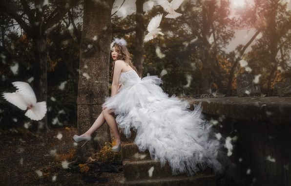 Picture birds, style, mood, model, dress, pigeons, Asian, the bride, wedding dress