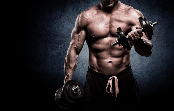 Photo Wallpaper Barbell Gym Muscle Man Bodybuilder