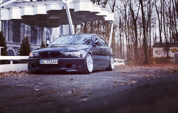 Picture BMW, autumn, stance, e46, 3series, 325ci