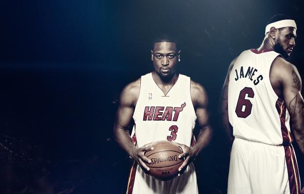 Picture the ball, basketball, nba, heat, Lebron James, Famous Stars Dwayne Wade, spalding, Miami heat