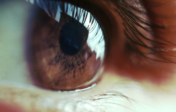 Picture eyes, eyelashes, the pupil