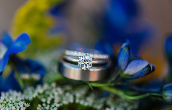 Picture flowers, stone, ring, wedding, blue petals