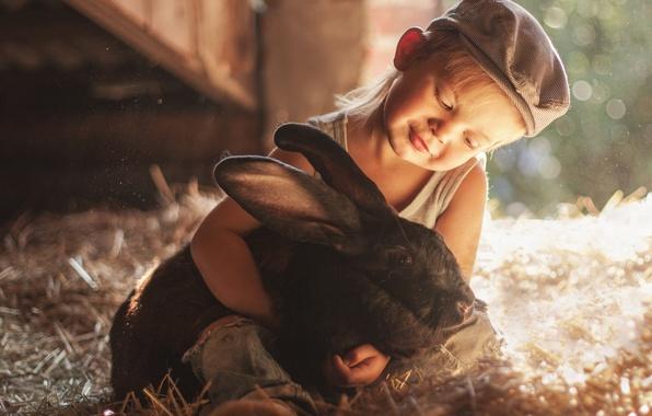 Picture boy, rabbit, friendship, hay, cap, friends