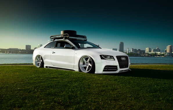 Picture Audi, Car, Sky, Grass, RS5, White, Low, Stancenation