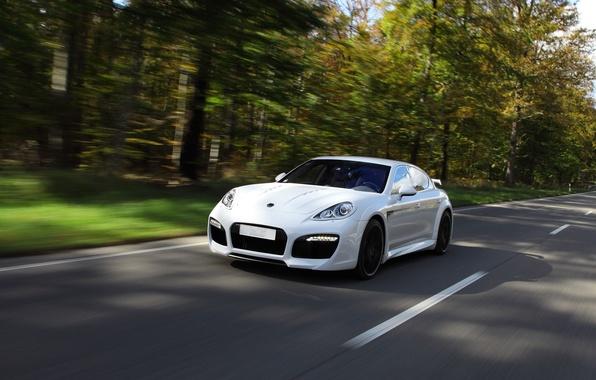 Picture road, white, speed, Porsche, Wood